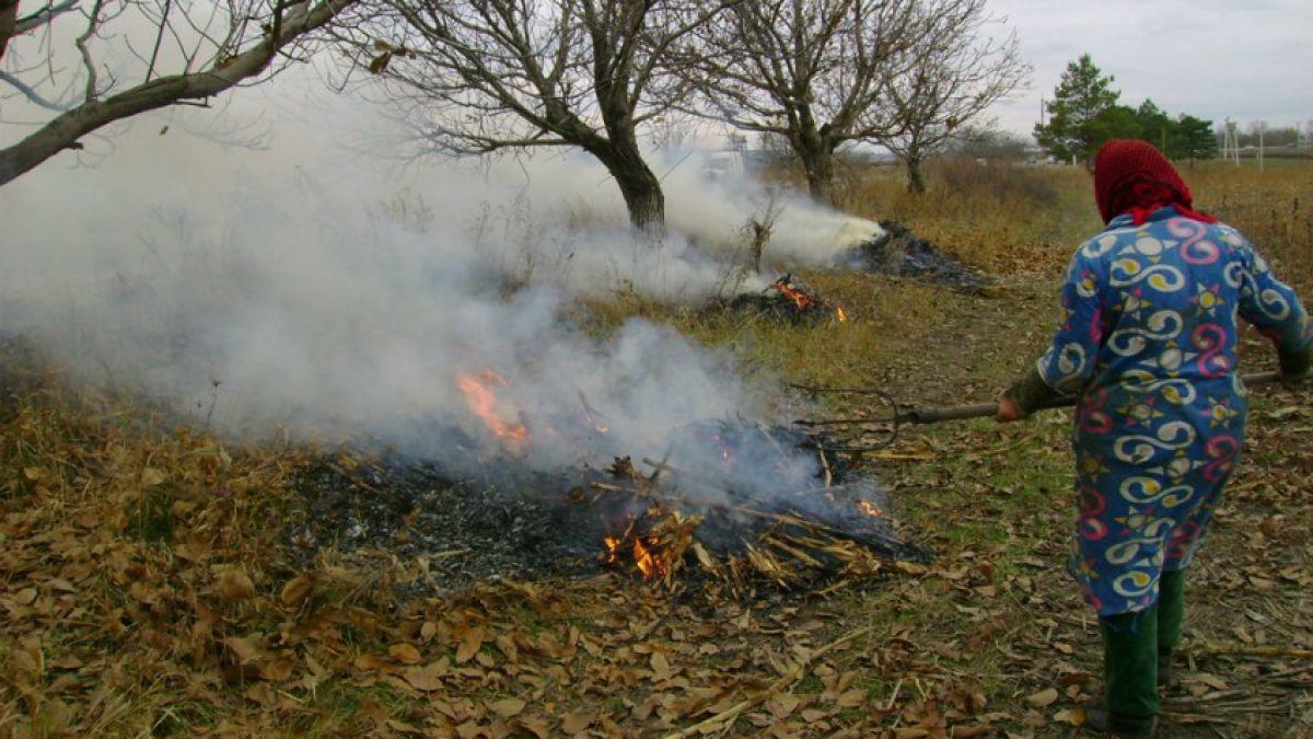 opțiunea platformei de foc)