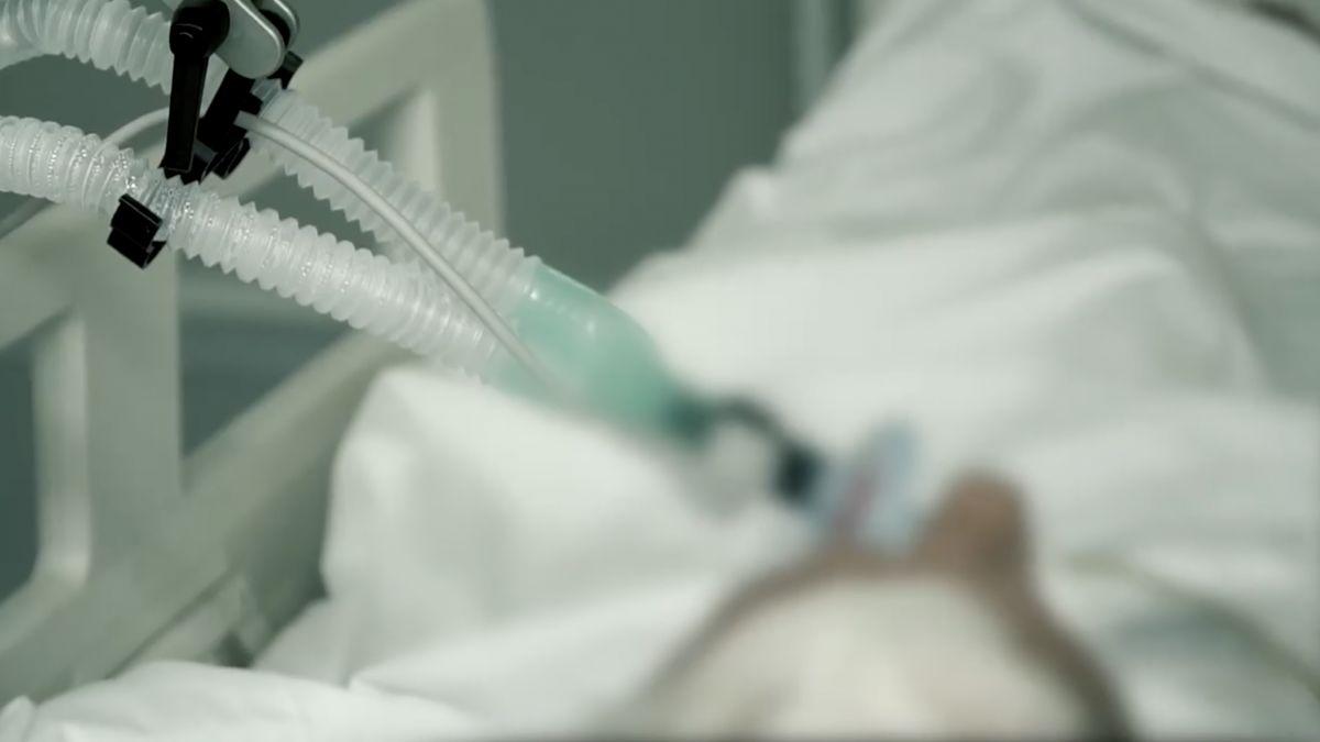 tratamentul medicației medicale ce fel de venele varicoase arată în etapele inițiale