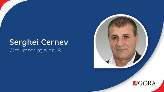 Profil de candidat | Circumscripția Nr. 8 Vulcănești. Despre candidații în Adunarea Populară - funcții, venituri averi