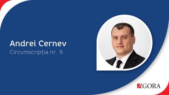 Profil de candidat | Circumscripția Nr. 9 Vulcănești. Cine sunt candidații care luptă pentru fotoliul de deputat în Adunarea Populară a Găgăuziei