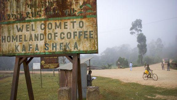 De la băutura călugărilor la cea a revoluționarilor: Cum a schimbat cafeaua istoria omenirii