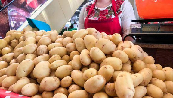 Consiliul Concurenței: ANSA, vinovată de prețurile exagerate la cartofi din luna aprilie