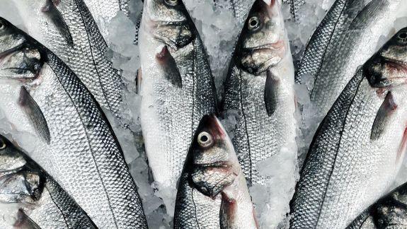 Audit și suspendări din funcție. Cum progresează ancheta ANSA pe cazul celor 73 de loturi de pește cu paraziți