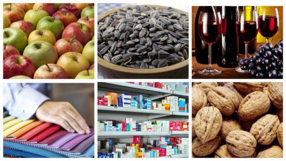 Exporturile moldovenești stagnează de un an. Ce trebuie să facă autoritățile