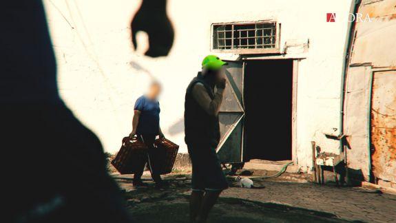 Meseriașii de după gratii. Cum se respectă dreptul la muncă al deținuților (VIDEO)