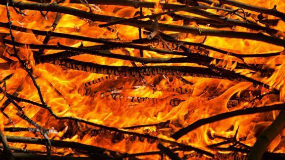 Podul din parcul Valea Trandafirilor, mistuit de flăcări (FOTO)