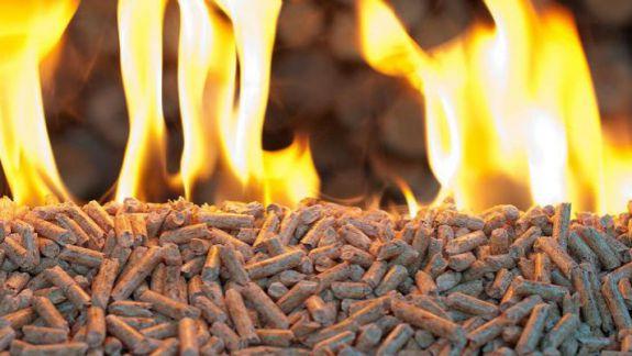 Proiectul Energie şi Biomasă îşi încheie activitatea în Republica Moldova. Câți bani au fost investiți în țara noastră