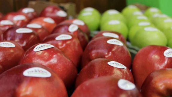 În anul 2019 niciun măr și nicio roșie din Moldova nu au ajuns pe piața din UE